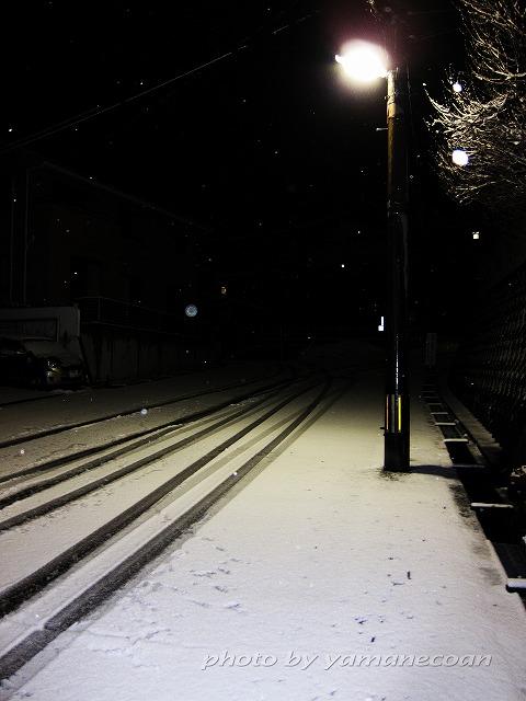 またまた雪.jpg