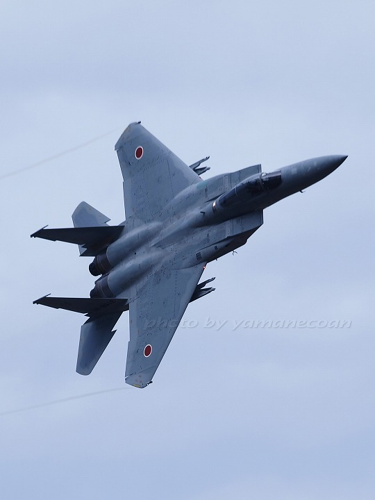 F15a.jpg