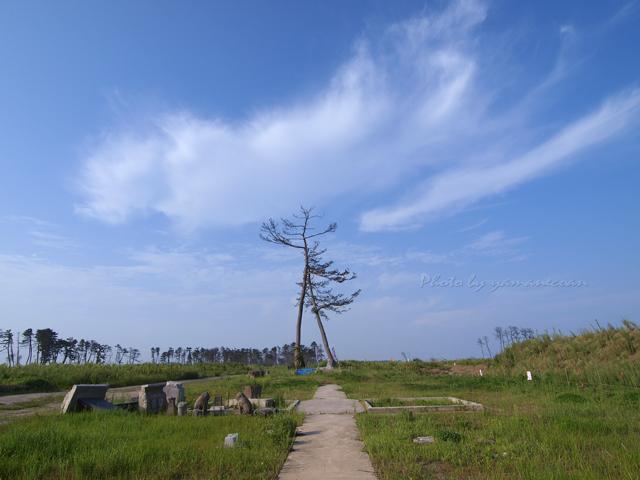 五柱神社1.jpg